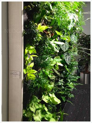 mur vegetal cnaps 300x400