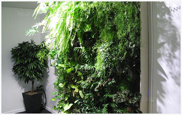 mur vegetal cnaps 636x400