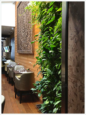 mur vegetal restaurant 300x400