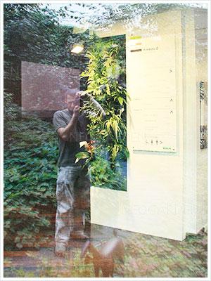 mur vegetal show room 300x400
