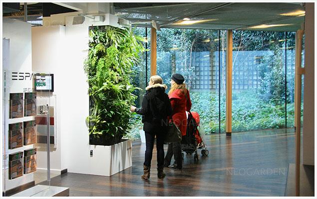 mur vegetal show room 636x400