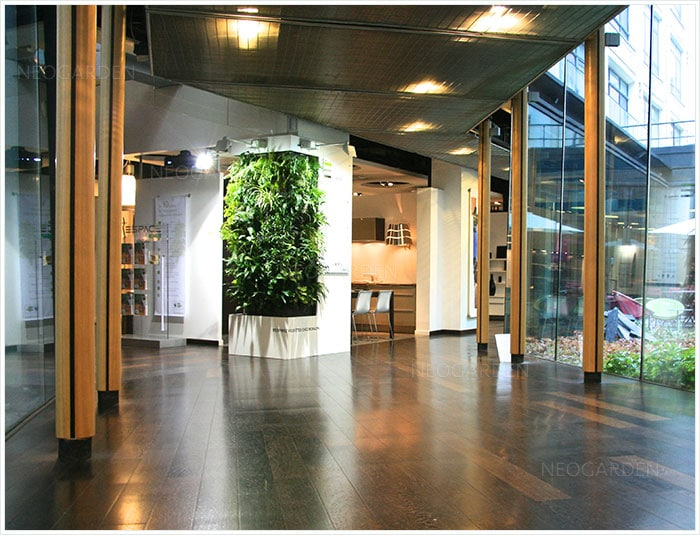 mur vegetal show room 700x535