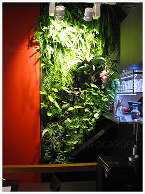 restaurant vietnamien mur vegetél 300x400