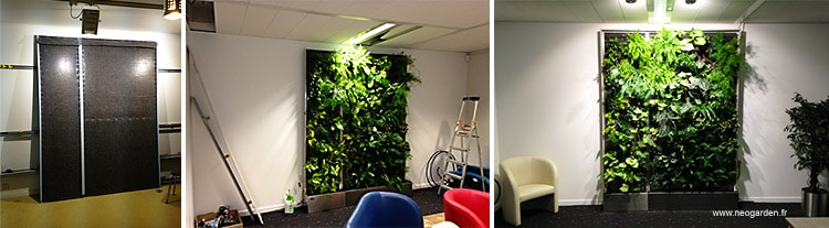 projet mur vegetal