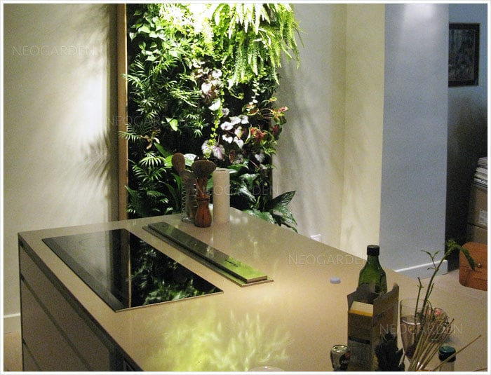mur-végétal-loft-haut