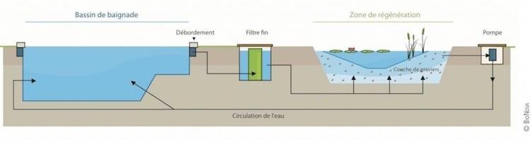 G nie v g tal les piscines ecologiques for Filtration piscine