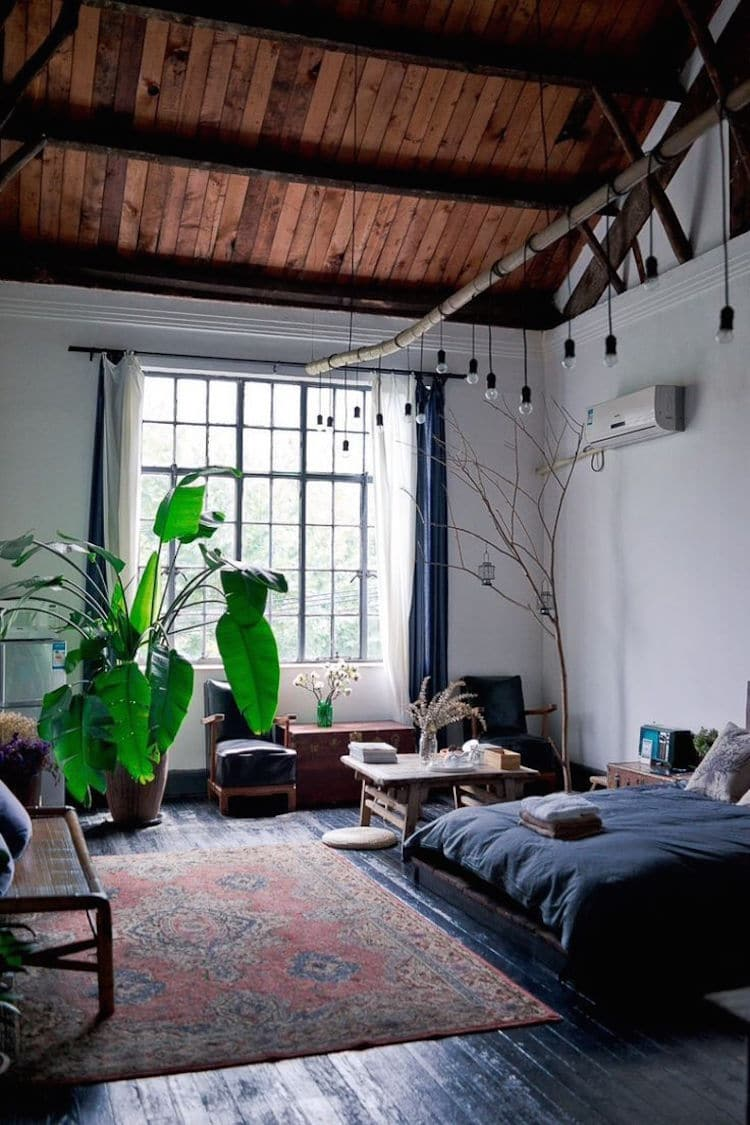 Les plantes repr sentent elles un danger dans la chambre for Plante pour chambre a coucher