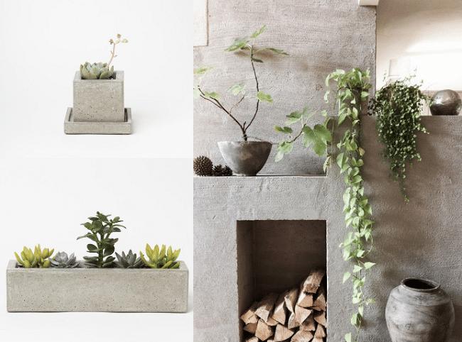 ciment-beton-pour-la-déco-plantes