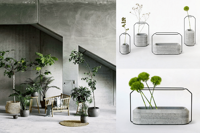 Tendance d co plantes et b ton - Deco plantes interieur ...