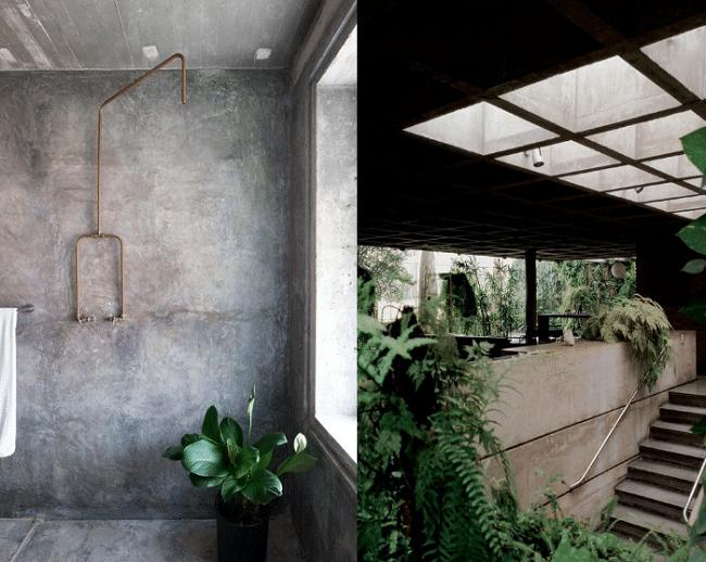 déco-interieur-brut-ciment-beton-plante