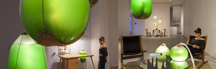 algues-electricite-energie-verte-futur