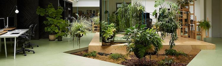 design-bureau-vert-biophilie-aménagement-plantes-jardin-interieur-nature-travail
