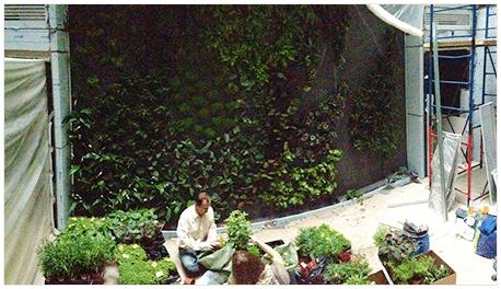 photo-jardin