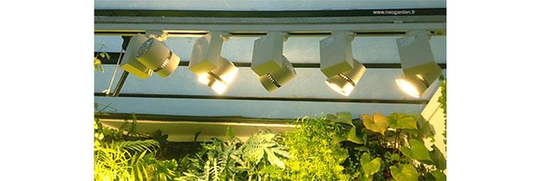 eclairage-mur-vegetal