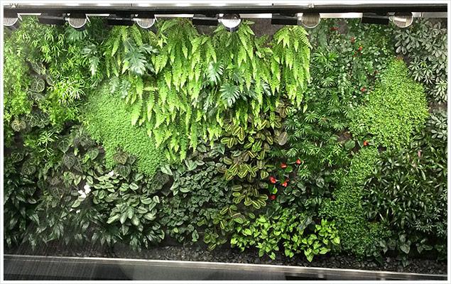 mur vegetal gazprom 636x400