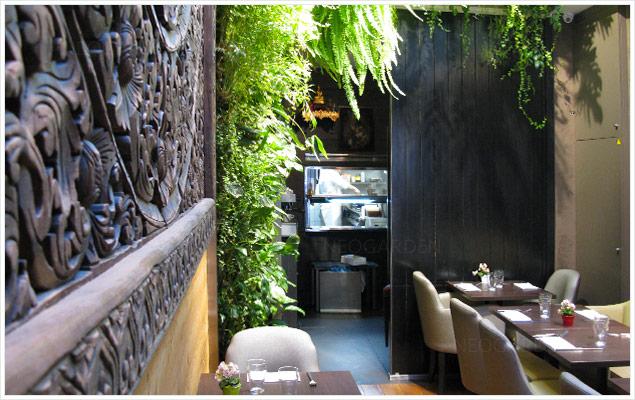 mur vegetal restaurant thailandais 636x400