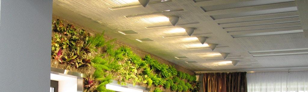 Eclairage du mur végétal