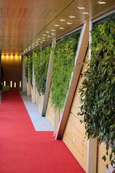 mur végétal luminosité