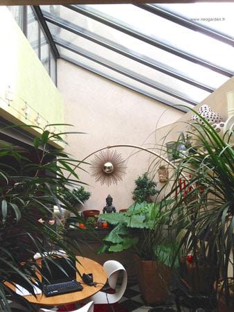 maison-avec-des-plantes