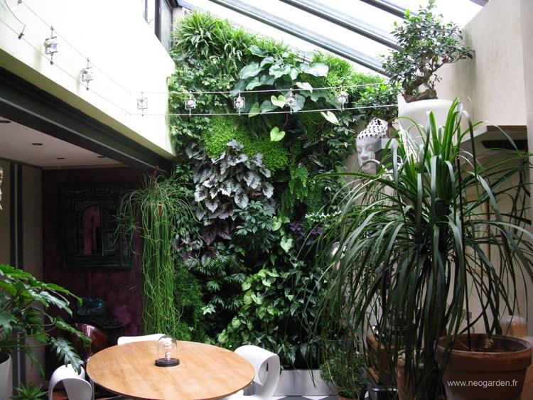 mur-vegetal-angers