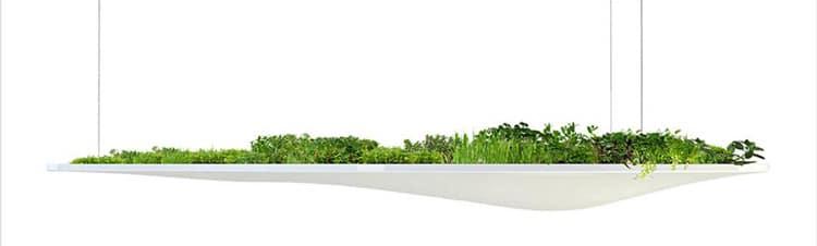 Design Végétal : une nouvelle tendance déco