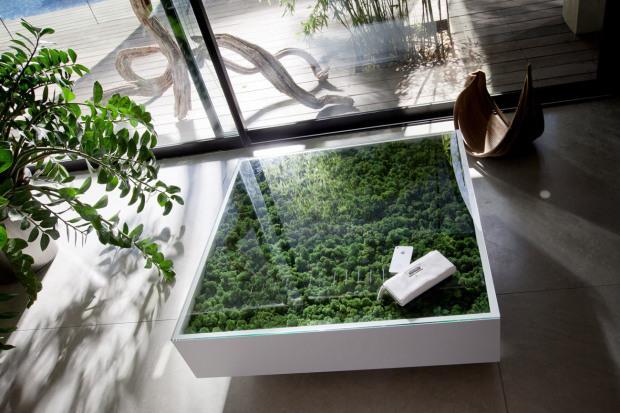 design vegetal table basse