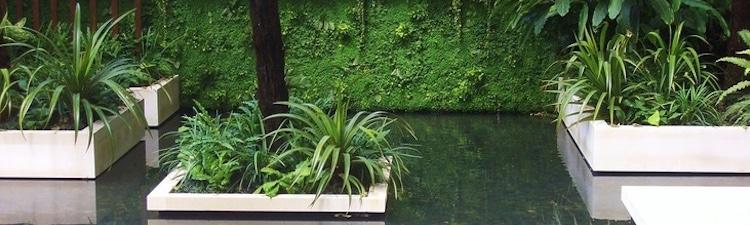 arrosage-mur-vegetal-jardin-interieur