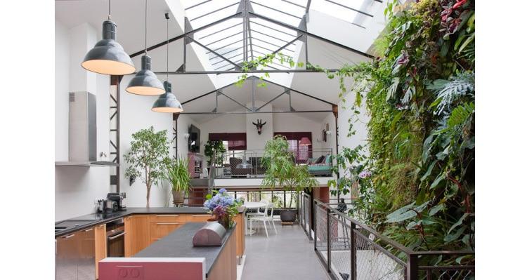 loft mur végétal maison