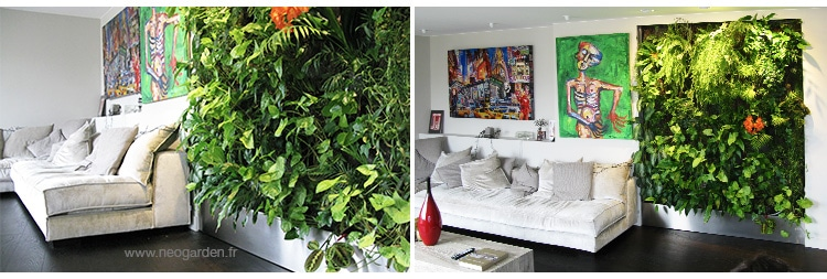 mur-vegetal-appartement-canape
