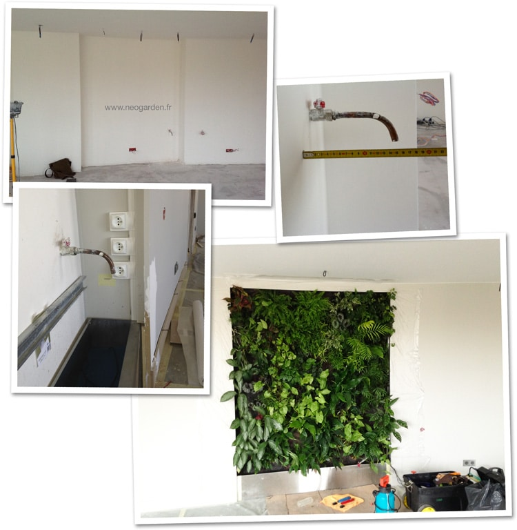 t moignage un mur v g tal dans le salon. Black Bedroom Furniture Sets. Home Design Ideas