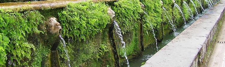 arrosage du mur végétal