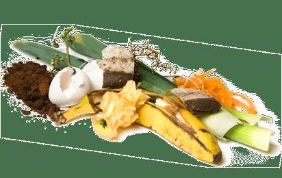 compost-dechets verts