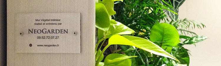 Témoignage : debriefing d'un projet de mur végétal avec un architecte