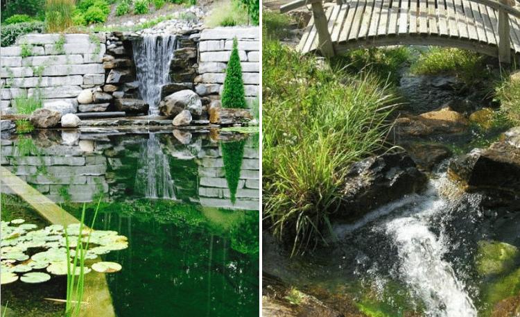 cascades-piscines-ecologiques