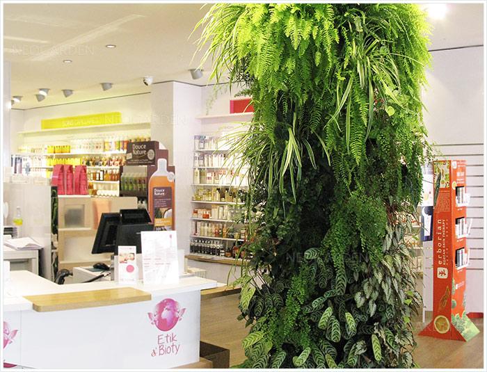 colone-vegetal-mur-vegetal-dans-un-magasin