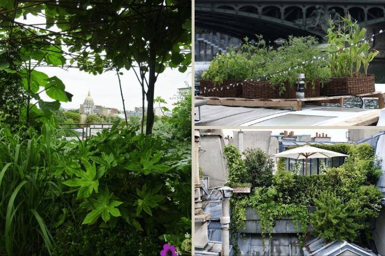 paris-vert-urbain