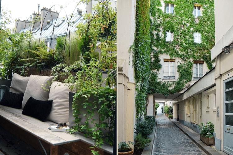 paris-mur-vegetal-terrasse