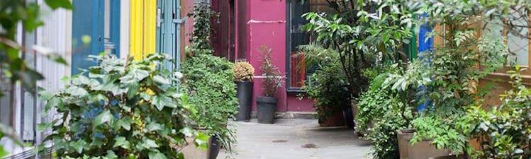 Paris : Permis de Fleurir