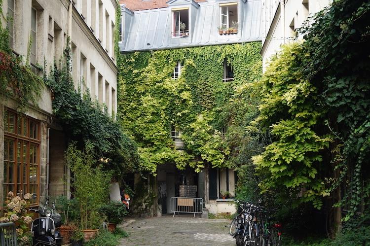 paris-mur-vegetal