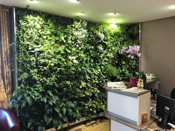 mur végétal luminothérapie