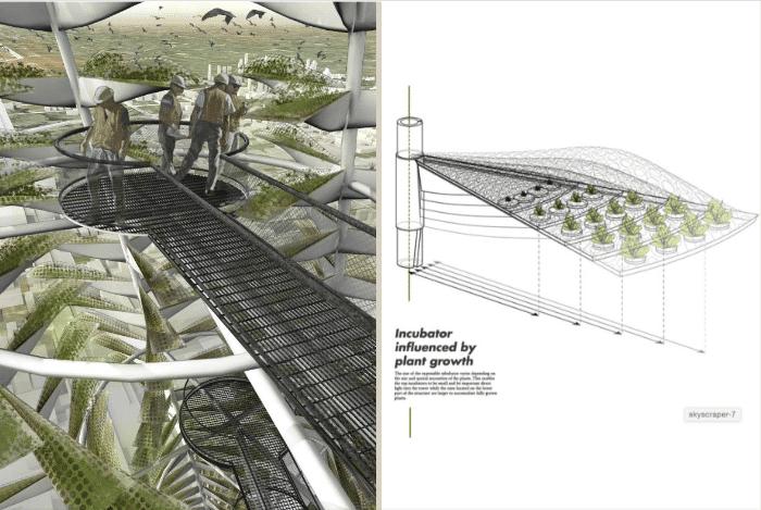 hydroponie-verticalité-nature-ville