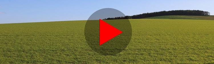 Un Mur Végétal à la Campagne (Vlog)