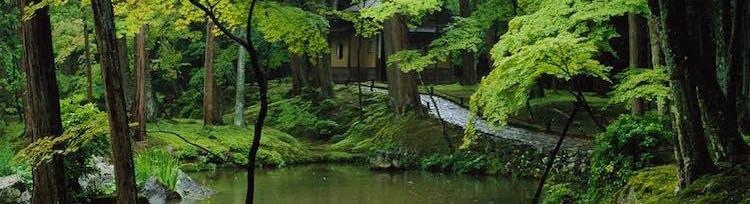 Jardins Japonais : les Symboliques Cachées