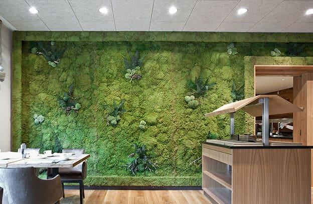 Choisir un mur végétal : les erreurs à ne pas commettre