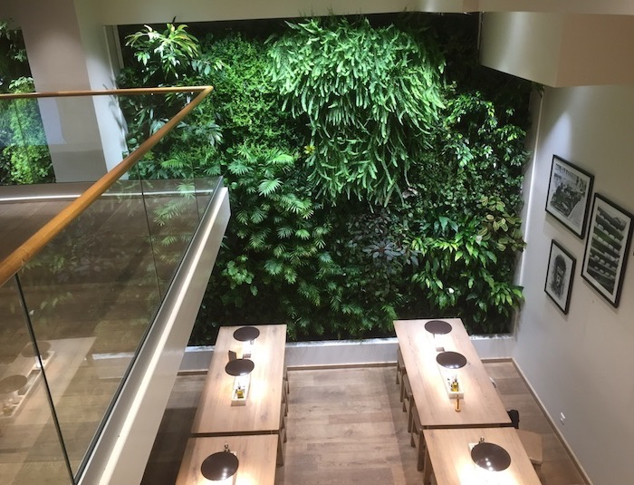 mur-végétal-interieur-restaurant