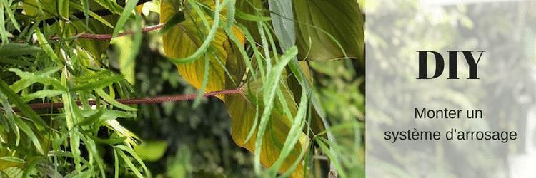 DIY : Faire un système d'arrosage automatique pour le mur végétal