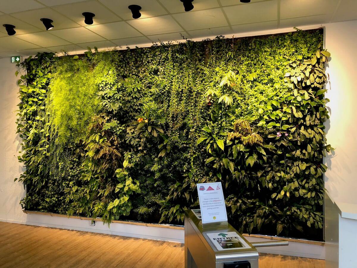 Jardin vertical à l'accueil de Club Energie à Orléans
