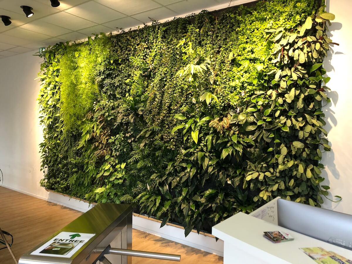 Mur végétalisé club Energie à Orléans