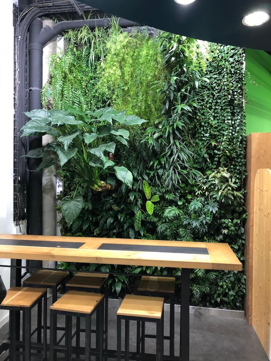 Mur végétalisé dans une épicerie Bio