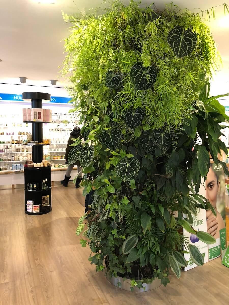 Colonne Végétale dans un magasin de produits Bio